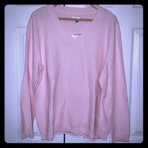 NWT Light Pink V-Neck Sweater